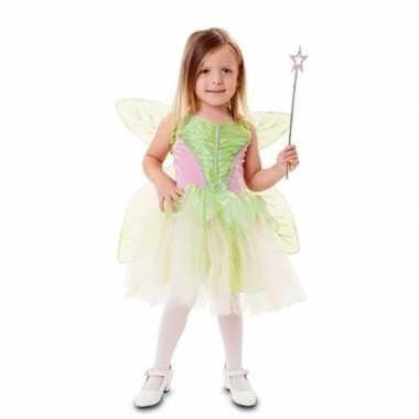 Fee carnavalskleding groen vleugels meisjes